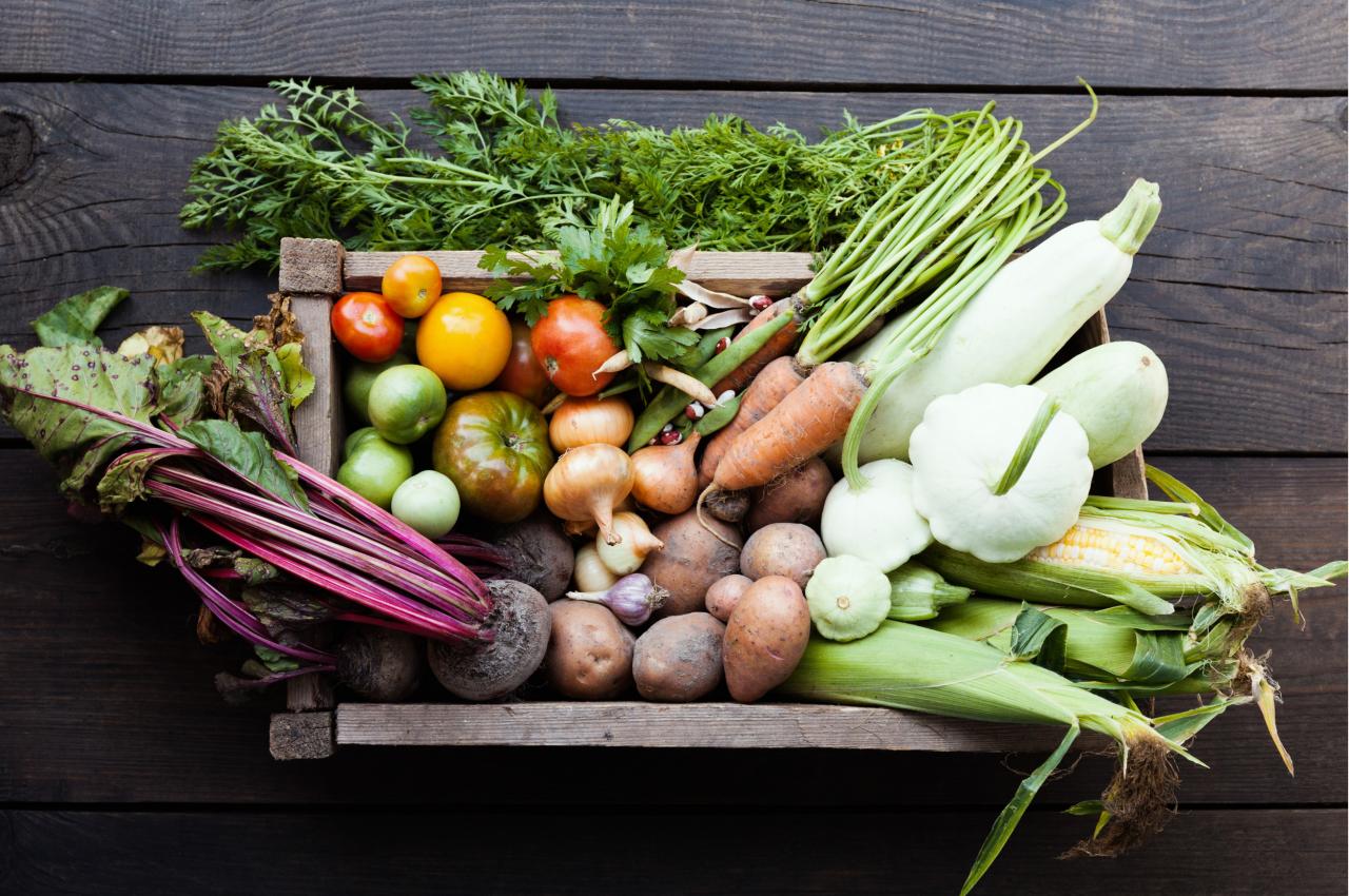Vitamine und Nährstoffe in Salat